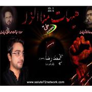 Syed Raza Rizvi